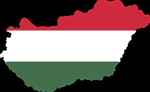 Übersetzer Ungarisch Muttersprachler
